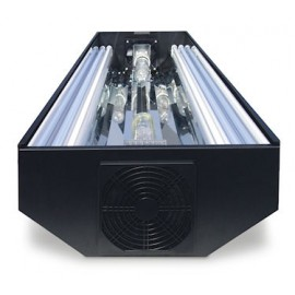 4 ft Cebu Sun Systems - 2 x 250 Watt Radiums