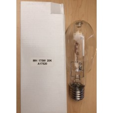 175 Watt 20,000K Oval Shape Bulb
