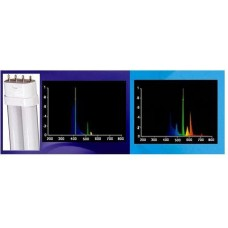 36W Compact FL 420nm Actinic/10,000K White - BUY 2, GET 2 FREE