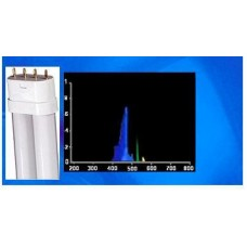 36W Compact FL 460nm Actinic Royal Blue