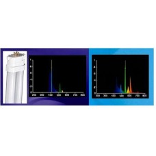 96w PC Compact FL 2 in 1 (420nm 03 Actinic/10K White)