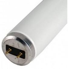 T12 - 2 ft 75 Watt VHO 10,000K White bulb